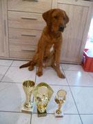 Saarland Sieger und Frankreich Sieger und belegte bei Best of Class den 3. Platz
