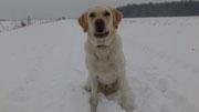 Im Schnee sitzen - nur ganz selten, meistens ...