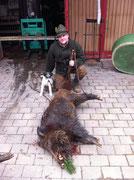 70kg-Keiler vom 18.02.2011, 22:50 in Ellenz-Poltersdorf an der Mosel