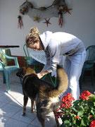 Gast mit Hund