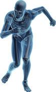 Humantechnologie Innere und Äußere Prothetik