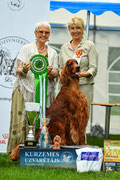 BEST IN SHOW 4 īru seters VILSON GARDSAOIR WOLHUN
