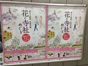 花と寺社めぐり ポスター