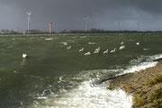 05 Storm aan zee