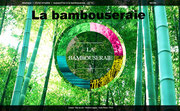 http://www.bambouseraie.com