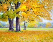 水彩画                            黄葉の樹