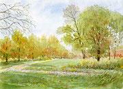 水彩画                            初秋の散歩道