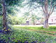 水彩画                             歴史を刻む北大農場