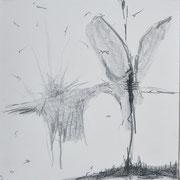 o.t., grafit auf papier, 25x25 cm