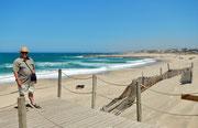 Strand von Gaia