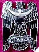 medal śląski 1 klasy -Medal przyznawany za udział w obronie śląska za 3 miesiące służby 2 klasy, za 6 miesięcy 1 klasy. wystepował również podział na czarny, srebrny,złoty