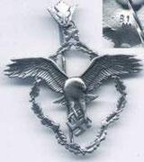 odznaka doświadczalnego instytutu lotnictwa  przyslugiwała za wybitne osiągnięcia naukowe .Posiadała dwa stopnie brązowy i srebny