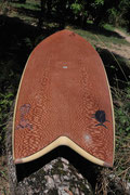 Lacewood fish surfboard