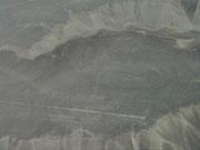 Nazca Lines, Nazca, Peru - Hummingbird!