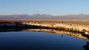 Laguna, San Pedro de Atacama, Chile