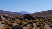 Bolivia (San Pedro de Atacama, Chile to Uyuni, Bolivia)