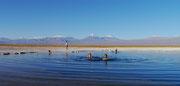 Laguna Piedra, San Pedro de Atacama, Chile