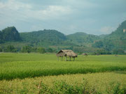 on the bus from Vang Vieng to Luang Prabang