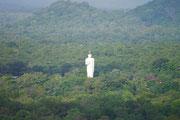 view from Ancient City of Sigiriya