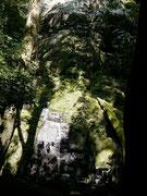 Rincon de la Vieja, Guanacaste, Costa Rica