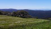 Mount Buller, Victoria, Australia