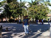 Dingo posing in Parque Central - Comayagua, Honduras