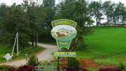 Ambewela Farm, Nuwara Eliya - one of the most famous dairy farms in Sri Lanka