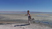 Fudgie trying to be like a Flamingo at the San Pedro de Atacama Salt Flats, Chile