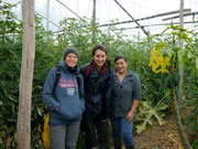 Fudgie, Victoria and Mony in one of the greenhouses for tomatoes!