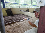 Ruiz Coffee Plantation (drying) - Boquete, Panama