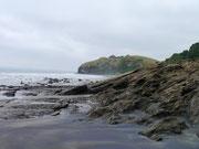 Playa Negra - Mompiche, Ecuador