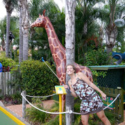 Putt Putt, Mermaid Beach - Jungle Trail