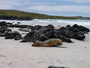 Puerto Chino, Isla San Cristobal, Galapagos Islands
