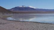 Laguna Altiplanicas (Canapa, Hedionda & Honda), Bolivia (San Pedro de Atacama, Chile to Uyuni, Bolivia)