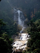 waterfall viewed from Little Adam's Peak, Ella