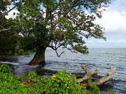 Isla Ometepe, Nicaragua
