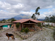 Visiting our homestay family's home just outside Otavalo, Ecuador