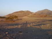 Nazca, Chauchilla Cemetery, Nazca, Peru