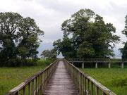 Parque Eco-Archeological de Los Naranjos - Lago de Yojoa, Honduras