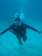 Diving at Seymour, Santa Cruz, Galapagos Islands