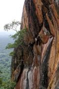 view half way to the top of Sigiriya Rock