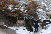 Torres del Paine, Puerto Natales, Chile