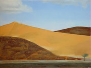 Sossusvlei Namibië - oil, acryl and Namibsand on canvas 80 x 60 cm