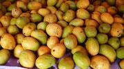Früchte des Südens