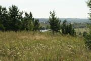 Вид на деревню Ипатова