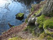 ©Inga Habenicht/ http://www.ingafoto.de