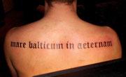 Schrift Tattoo Greifswald