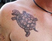 Tattoo Schildkröte Greifswald