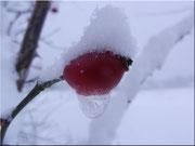 Der Schneehutmann