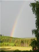Das Regenbogenlicht